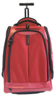 Samsonite Freeminder Flex Upright